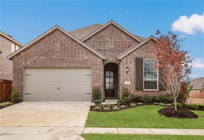 Aubrey Single Family Home For Sale: 4009 Big Prairie Drive