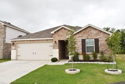 Fort Worth Residential Lease For Lease: 9937 Pyrite Drive
