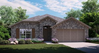 Single Family Home For Sale: 14629 Sundog Way
