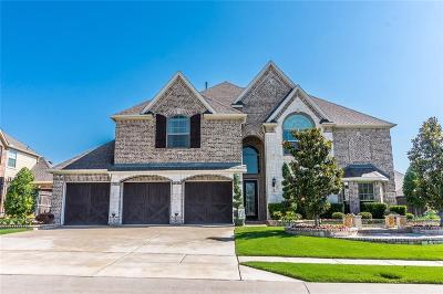 Prosper Single Family Home For Sale: 2221 Palo Duro Drive