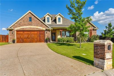 Willow Park Single Family Home For Sale: 165 Winged Foot Drive