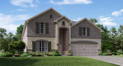 Single Family Home For Sale: 14701 Rocky Face Lane