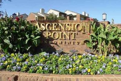Arlington Condo Active Contingent: 1654 Ascension Bluff Drive #335