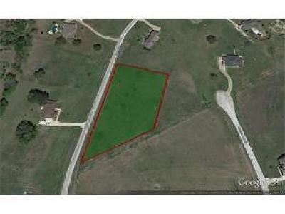 Mineral Wells Residential Lots & Land For Sale: 335 Brazos West Drive