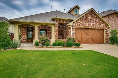 Savannah Single Family Home For Sale: 916 Lighthouse Lane