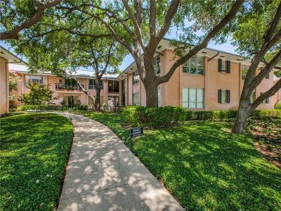 Condo Active Option Contract: 6325 Bandera Avenue #6325D