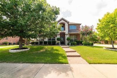 Allen Single Family Home For Sale: 1613 Buckthorne Drive