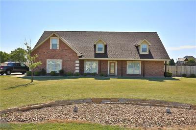 Abilene Single Family Home For Sale: 217 Sawbuck Trail