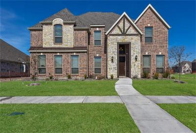 Frisco Single Family Home For Sale: 12978 Nimble Drive