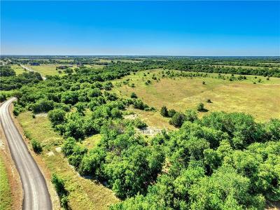 Celina, Carrollton Farm & Ranch For Sale: County Road 138