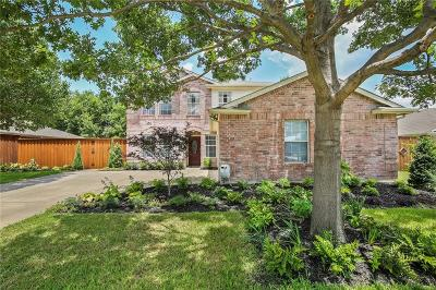 Allen Single Family Home For Sale: 907 Larkspur Drive
