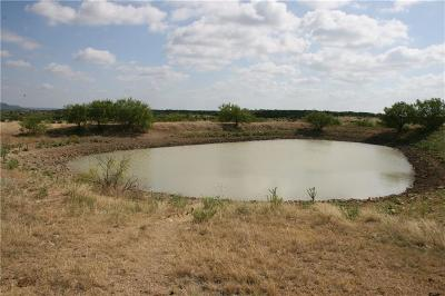 Palo Pinto Farm & Ranch For Sale: Fm 919