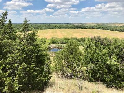 Comanche Farm & Ranch For Sale: 1100 County Road 235