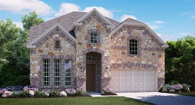 Frisco Single Family Home For Sale: 14215 Danehurst Lane