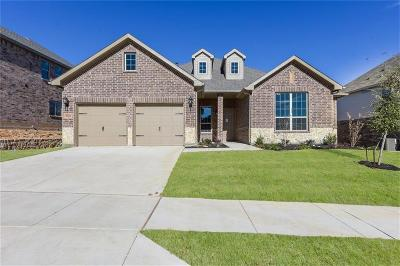 Fort Worth Single Family Home For Sale: 2529 Boot Hill Lane