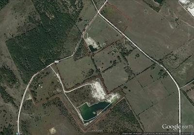 Mexia TX Farm & Ranch For Sale: $1,200,000