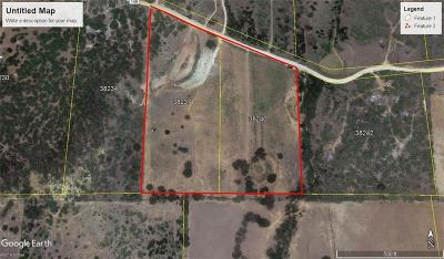 Brownwood Farm & Ranch For Sale: 9152 County Road 149