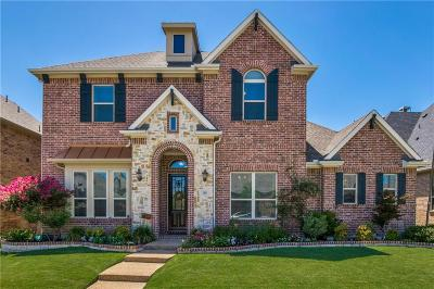 Lewisville Single Family Home For Sale: 408 Four Stones Boulevard