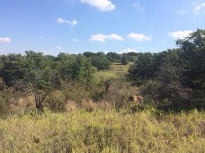 Jacksboro Farm & Ranch For Sale: Hwy 148