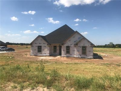 Springtown Single Family Home For Sale: 203 Young Road