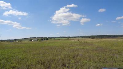 Mineral Wells Residential Lots & Land For Sale: 00 S Keller Road