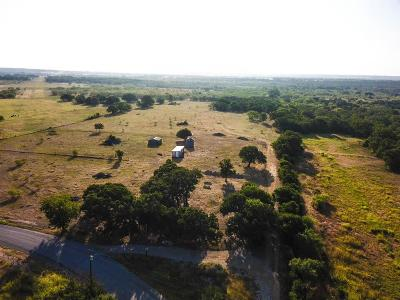 Millsap Farm & Ranch For Sale: 2341 Cool Junction