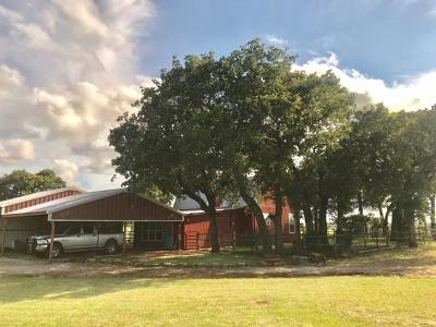Mineral Wells Farm & Ranch For Sale: 2836 Hayes