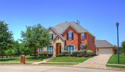 Flower Mound Single Family Home For Sale: 4704 Saint Charles Court