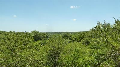 Montague County Farm & Ranch For Sale: 12863 S Fm 677