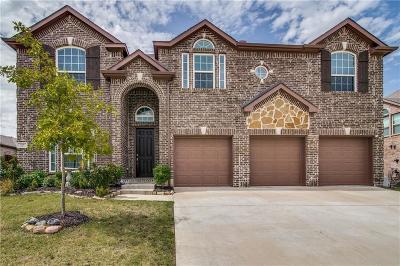 Single Family Home For Sale: 317 Cripple Creek Drive