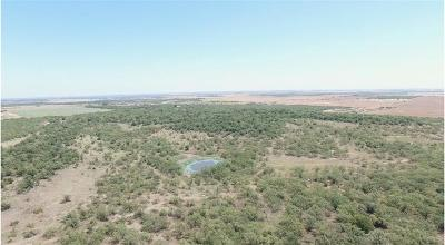 Throckmorton County Farm & Ranch For Sale: Tbd Old Albany Road