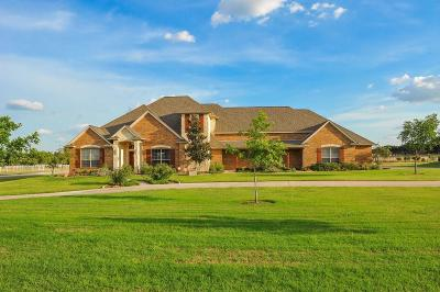 Parker County Single Family Home For Sale: 165 Pack Saddle Trail