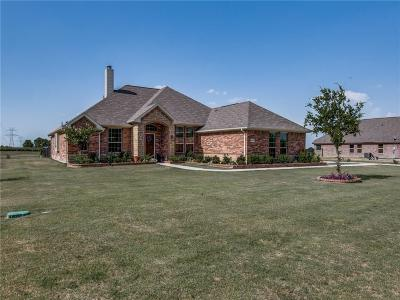 Farmersville Single Family Home Active Kick Out: 19081 County Road 646