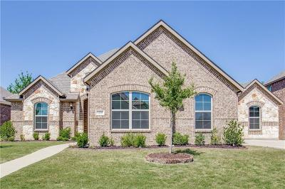 Burleson Single Family Home For Sale: 1208 Madera Drive