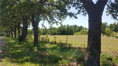 Springtown Residential Lots & Land For Sale: 101 Sarra Lane