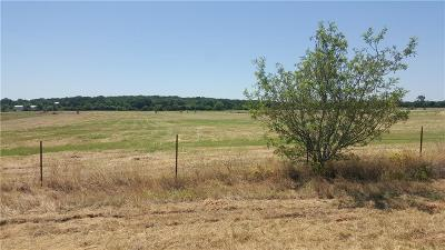Springtown Residential Lots & Land For Sale: 451 Union Lane