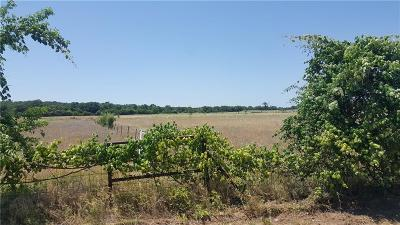 Parker County, Tarrant County, Wise County Residential Lots & Land For Sale: 417 Union Lane