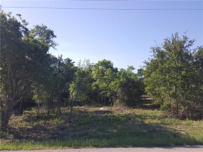 Parker County Residential Lots & Land For Sale: 3721 J E Woody