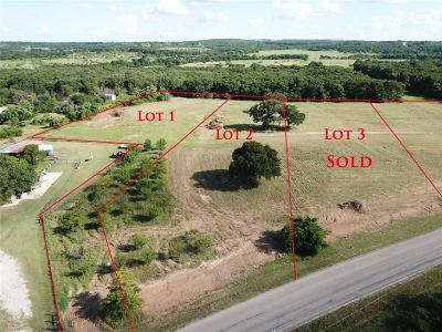 Springtown Residential Lots & Land For Sale: 2201 J E Woody Road