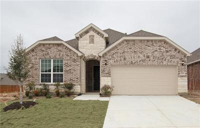 McKinney Single Family Home For Sale: 2713 Strand Lane
