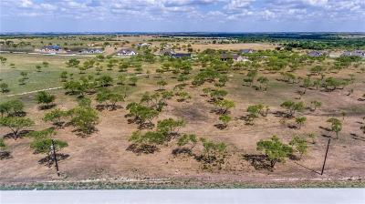 Aledo Residential Lots & Land For Sale: L20bb Overlook Trail