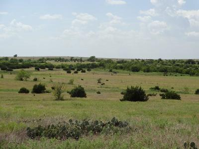 Godley Farm & Ranch Active Option Contract: Tbd N County Road 1226