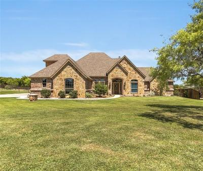 Parker County Single Family Home For Sale: 133 Rockhouse Drive