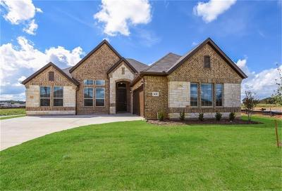 Burleson Single Family Home For Sale: 1428 Grassy Meadows