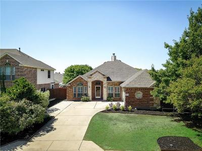 Fort Worth Single Family Home For Sale: 3205 Dalhart Drive