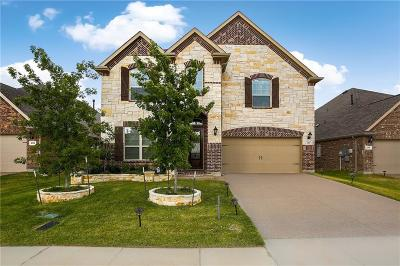 Lewisville Single Family Home For Sale: 2317 Prairie Wind Path