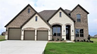 Melissa Single Family Home For Sale: 300 Crystal Creek Lane