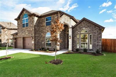 Fort Worth Single Family Home For Sale: 9232 Brittlebrush Trail