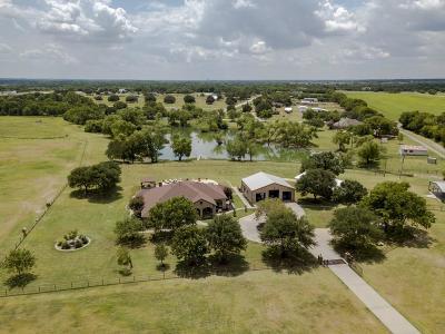 Aubrey Farm & Ranch For Sale: 9920 W Fm 428