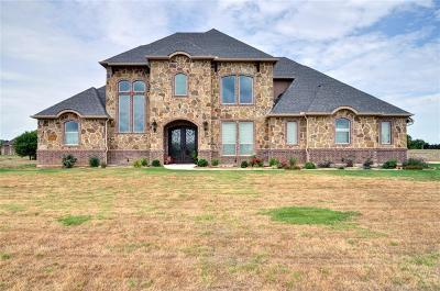 Ellis County Single Family Home For Sale: 2029 Blue Ridge Drive